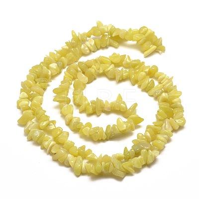 Natural Lemon Jade Chip Bead StrandsG-M205-22-1
